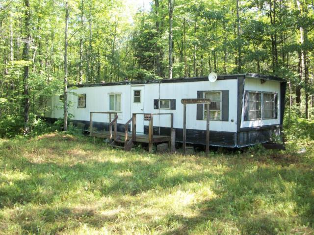 NN-37.75 Acres Kirby Rd., Marion, MI 49665 (MLS #18004720) :: Carlson Realtors & Development