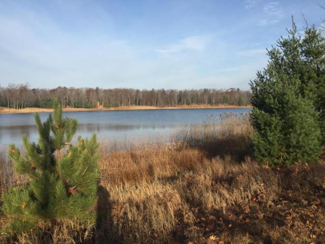 E Shingle Mill Way Lot 35, Free Soil, MI 49411 (MLS #18005891) :: Deb Stevenson Group - Greenridge Realty