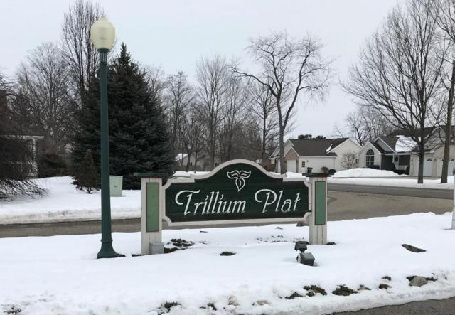 1149 Trillium Circle, Vicksburg, MI 49097 (MLS #18005902) :: Matt Mulder Home Selling Team