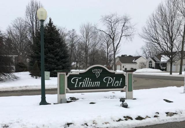 1201 Trillium Circle, Vicksburg, MI 49097 (MLS #18005906) :: Deb Stevenson Group - Greenridge Realty