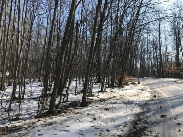 Nn S Forest Trail, Leroy, MI 49655 (MLS #18005916) :: 42 North Realty Group