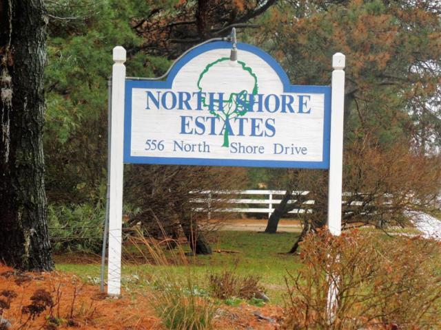 556 North Shore Drive #14, South Haven, MI 49090 (MLS #18005966) :: Carlson Realtors & Development