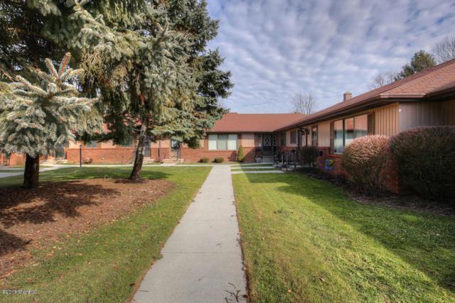 8550 Elkwood Drive SW #65, Byron Center, MI 49315 (MLS #18006106) :: Matt Mulder Home Selling Team