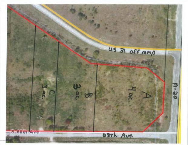 VL Parcel C 68th Avenue, New Era, MI 49446 (MLS #18006207) :: Carlson Realtors & Development