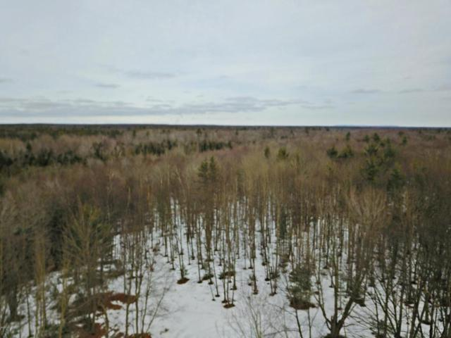Morton Road 195 Acres, Free Soil, MI 49411 (MLS #18006451) :: Deb Stevenson Group - Greenridge Realty