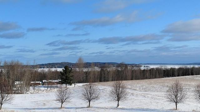 4874 E Water View Drive #50, Lake Leelanau, MI 49653 (MLS #18008920) :: Carlson Realtors & Development