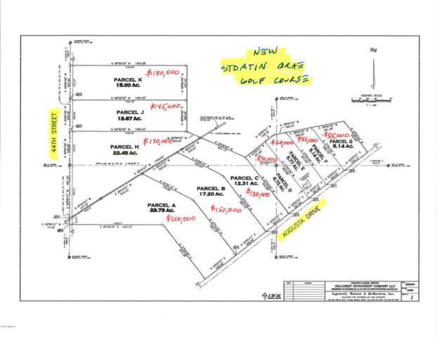 Parcel H 44TH Street N, Augusta, MI 49012 (MLS #18009022) :: Matt Mulder Home Selling Team