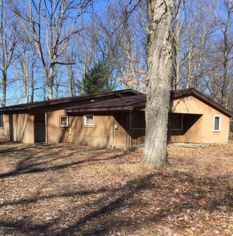 10779 N Bass Lake Road, Irons, MI 49644 (MLS #18009203) :: JH Realty Partners
