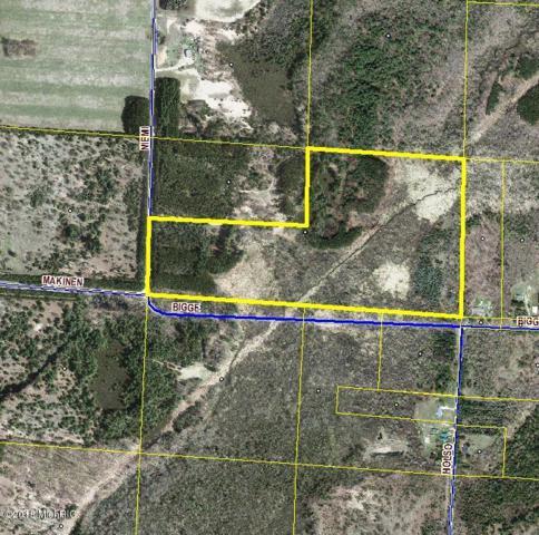 59.5 Acres Bigge Road, Kaleva, MI 49645 (MLS #18009682) :: JH Realty Partners