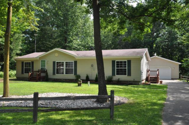 10343 Hardwood Trail, Perrinton, MI 48871 (MLS #18010012) :: JH Realty Partners