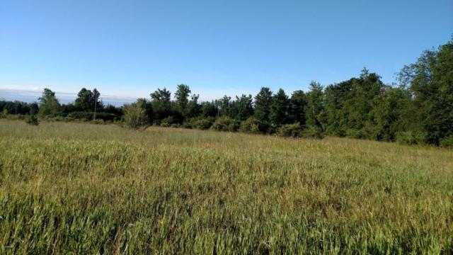 9034 21 Mile, Sand Lake, MI 49343 (MLS #18010507) :: Deb Stevenson Group - Greenridge Realty
