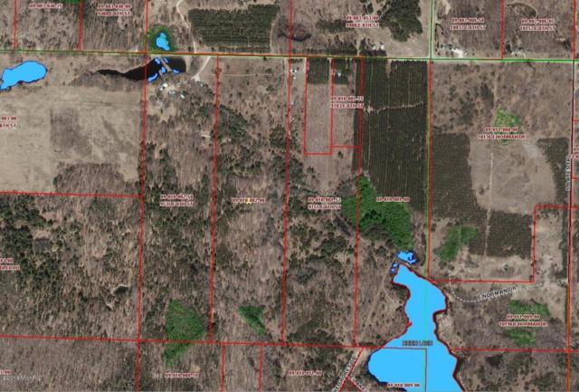 00 8 Mile Street, Reed City, MI 49677 (MLS #18010735) :: Carlson Realtors & Development