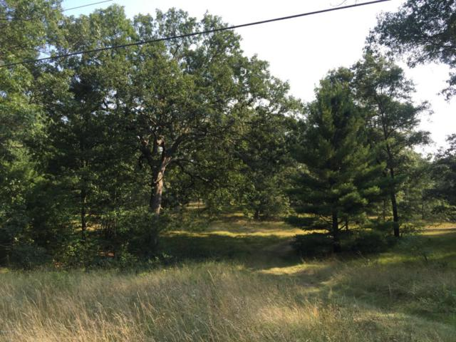 0 Crystal Lake Road Par E, Whitehall, MI 49461 (MLS #18011090) :: JH Realty Partners