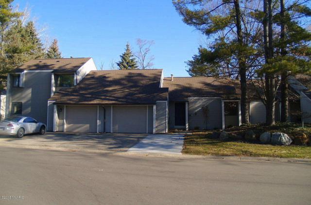 4313 Indian Springs Drive SW #14, Grandville, MI 49418 (MLS #18011149) :: JH Realty Partners