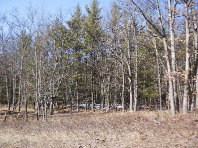 M-55 Highway, Wellston, MI 49689 (MLS #18011223) :: JH Realty Partners