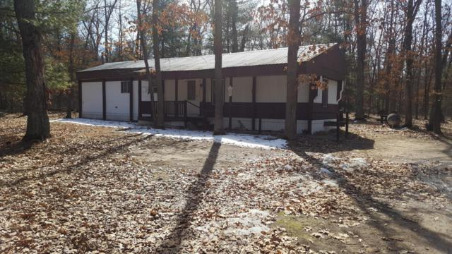 6073 W 11 1/2 Mile Road, Irons, MI 49644 (MLS #18011426) :: JH Realty Partners
