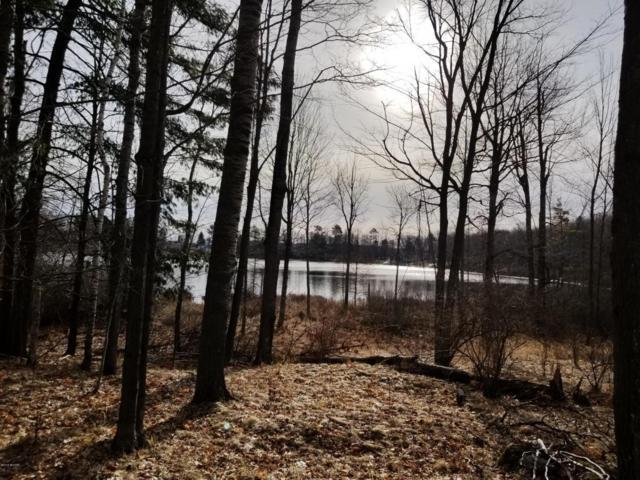 Wildwood Road, Evart, MI 49631 (MLS #18012160) :: Carlson Realtors & Development