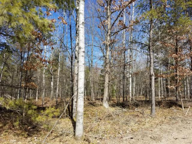 Parcel E 72nd Street, Idlewild, MI 49642 (MLS #18012349) :: 42 North Realty Group