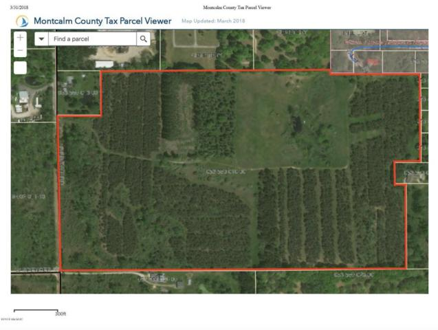 70A S Brown Road SW, Stanton, MI 48888 (MLS #18012367) :: JH Realty Partners