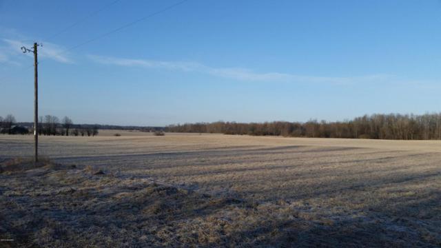 N Reek Road, Custer, MI 49405 (MLS #18012486) :: Deb Stevenson Group - Greenridge Realty