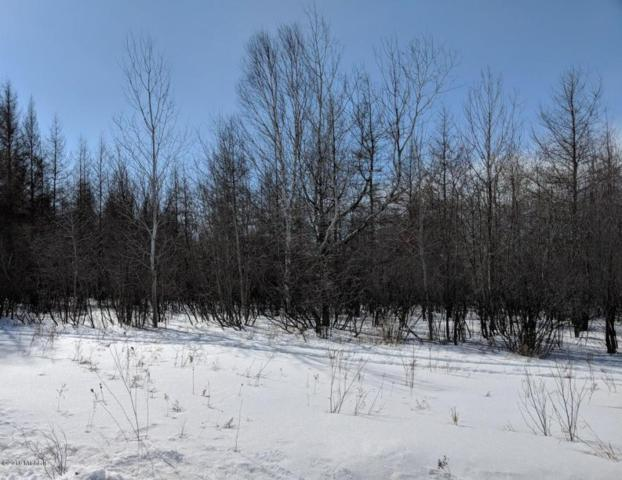 S Forrest Side Road, Brimley, MI 49715 (MLS #18013081) :: Deb Stevenson Group - Greenridge Realty