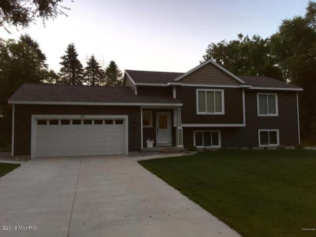 6020 Greenbriar Drive, Lowell, MI 49331 (MLS #18013121) :: JH Realty Partners