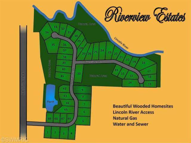 1380 N Hillside Drive #34, Ludington, MI 49431 (MLS #18013393) :: Deb Stevenson Group - Greenridge Realty