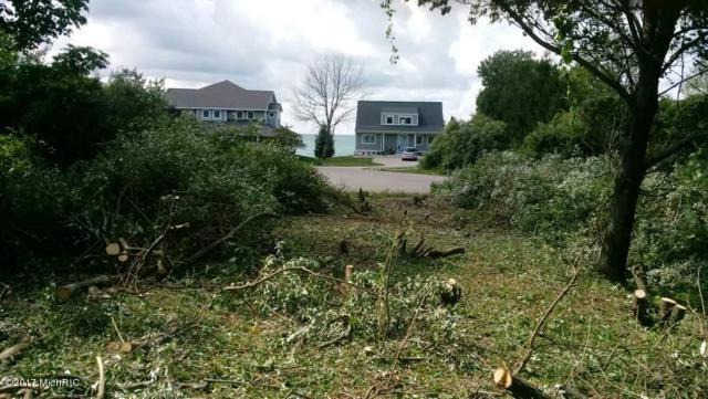 1708 S Shoreview Court, Ludington, MI 49431 (MLS #18013886) :: Deb Stevenson Group - Greenridge Realty