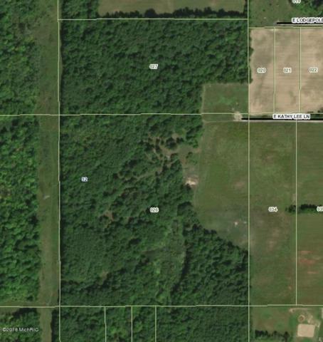 E Kathy Lee Lane, Sand Lake, MI 49343 (MLS #18013957) :: Carlson Realtors & Development