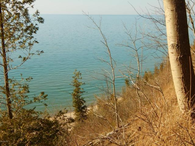 1412-B, C Lots Lakeshore/Snape Road, Manistee, MI 49660 (MLS #18014059) :: Deb Stevenson Group - Greenridge Realty
