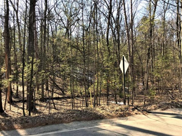 Longbridge Road Lot 32 A & Lot , Pentwater, MI 49449 (MLS #18014362) :: Deb Stevenson Group - Greenridge Realty