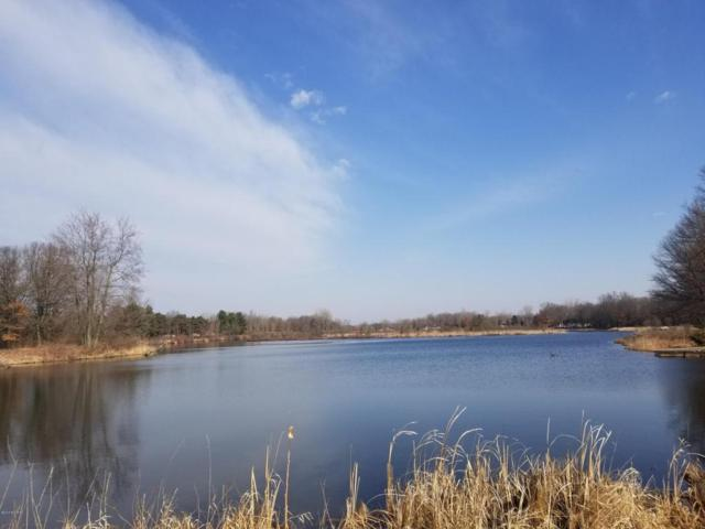 Address Not Published, Canadian Lakes, MI 49346 (MLS #18014375) :: JH Realty Partners