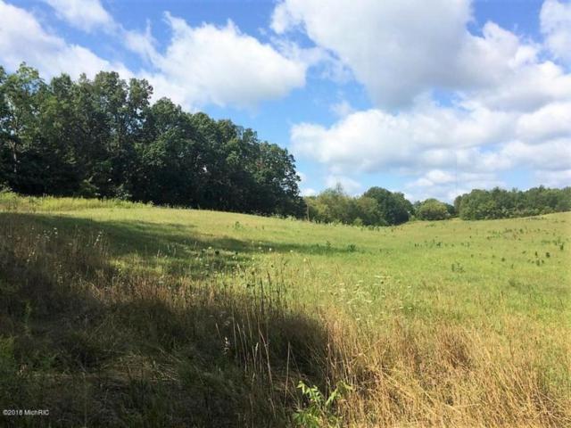 0 Behling Road, Concord, MI 49237 (MLS #18014518) :: Carlson Realtors & Development