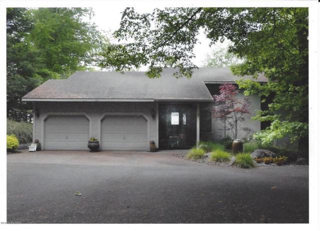 5525 N Otter Ridge Drive, Ludington, MI 49431 (MLS #18014677) :: JH Realty Partners