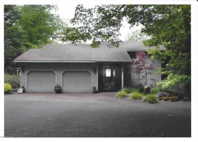 5525 N Otter Ridge Drive, Ludington, MI 49431 (MLS #18014677) :: Deb Stevenson Group - Greenridge Realty