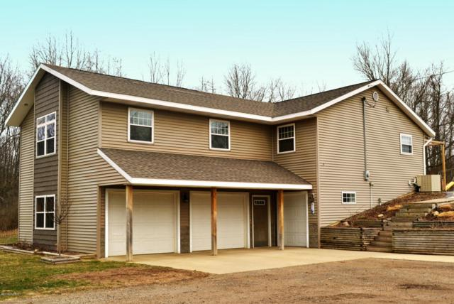 29535 22nd, Gobles, MI 49055 (MLS #18014819) :: JH Realty Partners