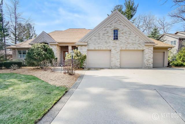 15462 Oak Point Drive, Spring Lake, MI 49456 (MLS #18014900) :: JH Realty Partners