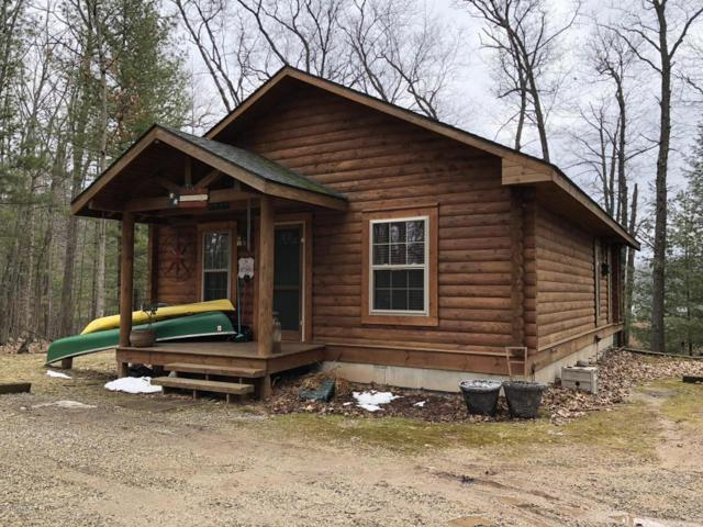 8459 W Bluegill Drive, Irons, MI 49644 (MLS #18015034) :: JH Realty Partners