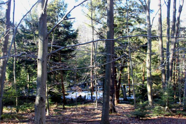 V/L W Fruitvale Road, Montague, MI 49437 (MLS #18015080) :: Deb Stevenson Group - Greenridge Realty