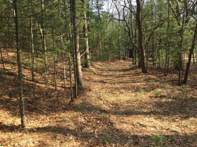 North Avenue 1.75 Acres, Pentwater, MI 49449 (MLS #18015193) :: 42 North Realty Group