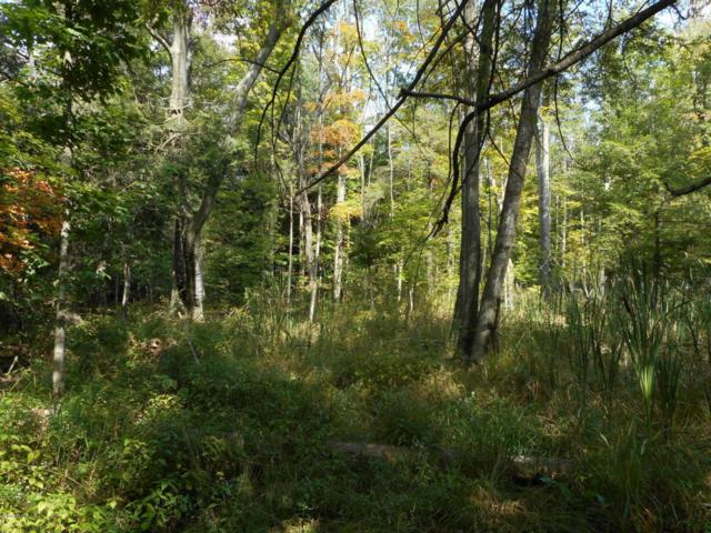 N Mac Road, Irons, MI 49644 (MLS #18015352) :: JH Realty Partners