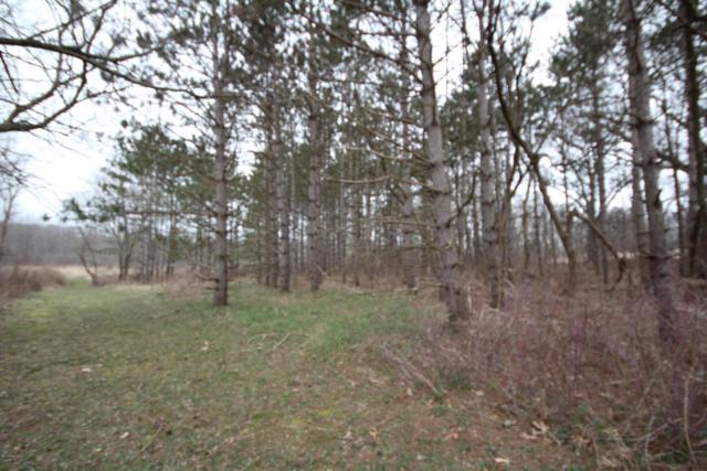 1 M-40 Highway, Marcellus, MI 49067 (MLS #18015354) :: Deb Stevenson Group - Greenridge Realty