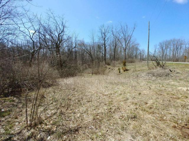 9900 Maudlin Road, New Buffalo, MI 49117 (MLS #18015769) :: JH Realty Partners