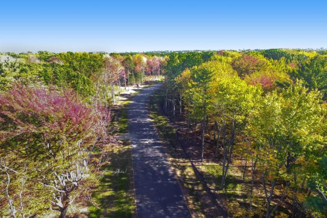 LOT F Windemere Way, Holland, MI 49423 (MLS #18015967) :: JH Realty Partners