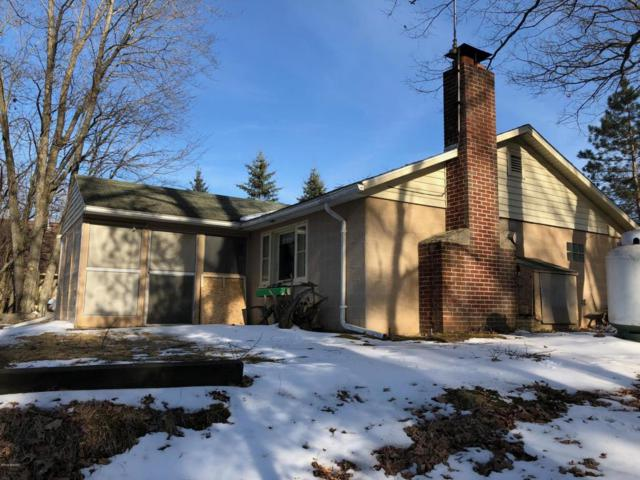 8254 W 11 1/2 Mile Road, Irons, MI 49644 (MLS #18016011) :: JH Realty Partners
