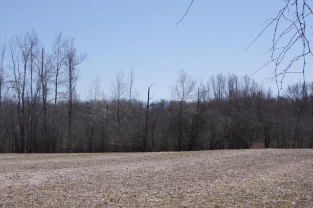 0-Parcel A North Adams Road, Jonesville, MI 49250 (MLS #18016027) :: Carlson Realtors & Development