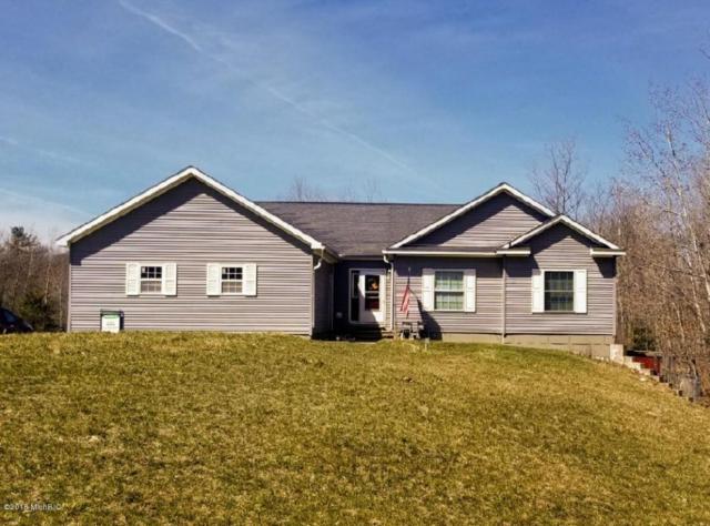 15655 Ritchie NE, Cedar Springs, MI 49319 (MLS #18016102) :: Deb Stevenson Group - Greenridge Realty