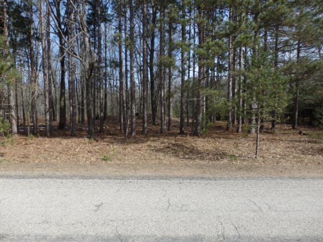 Fox Farm Road, Manistee, MI 49660 (MLS #18016158) :: Deb Stevenson Group - Greenridge Realty