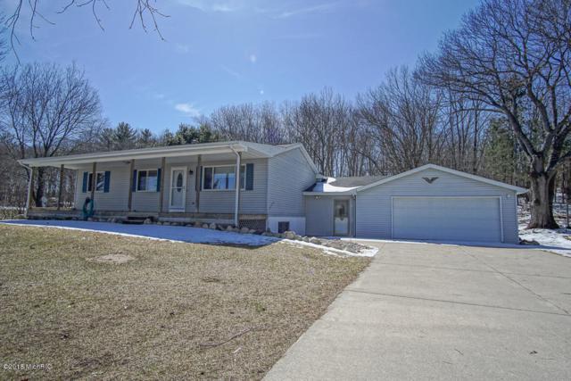 16953 Mckinley Road, Big Rapids, MI 49307 (MLS #18016243) :: JH Realty Partners