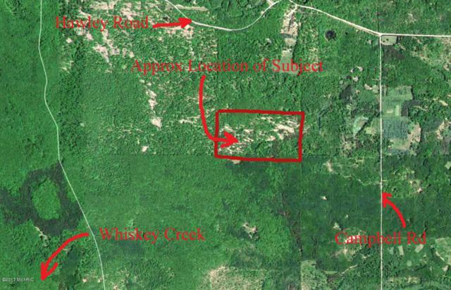 V/L No Road Trail, Custer, MI 49405 (MLS #18016566) :: Carlson Realtors & Development